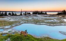 National Geographic Nature Photographer of the Year 2016. Єллоустонський національний парк, США